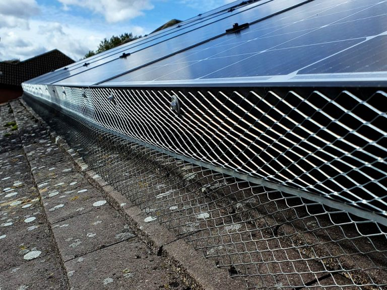 Bird Proofing Solar Panels